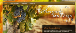 Web Design: TheVineyardsSanDiego.com